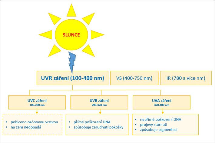Jaké ultrafialové záření nám na zem posílá sluníčko a co to pro nás znamená?